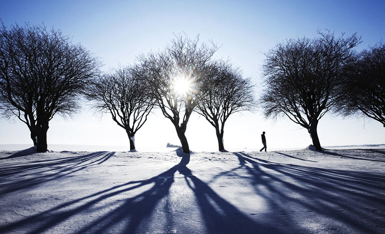 Do You Walk In White?